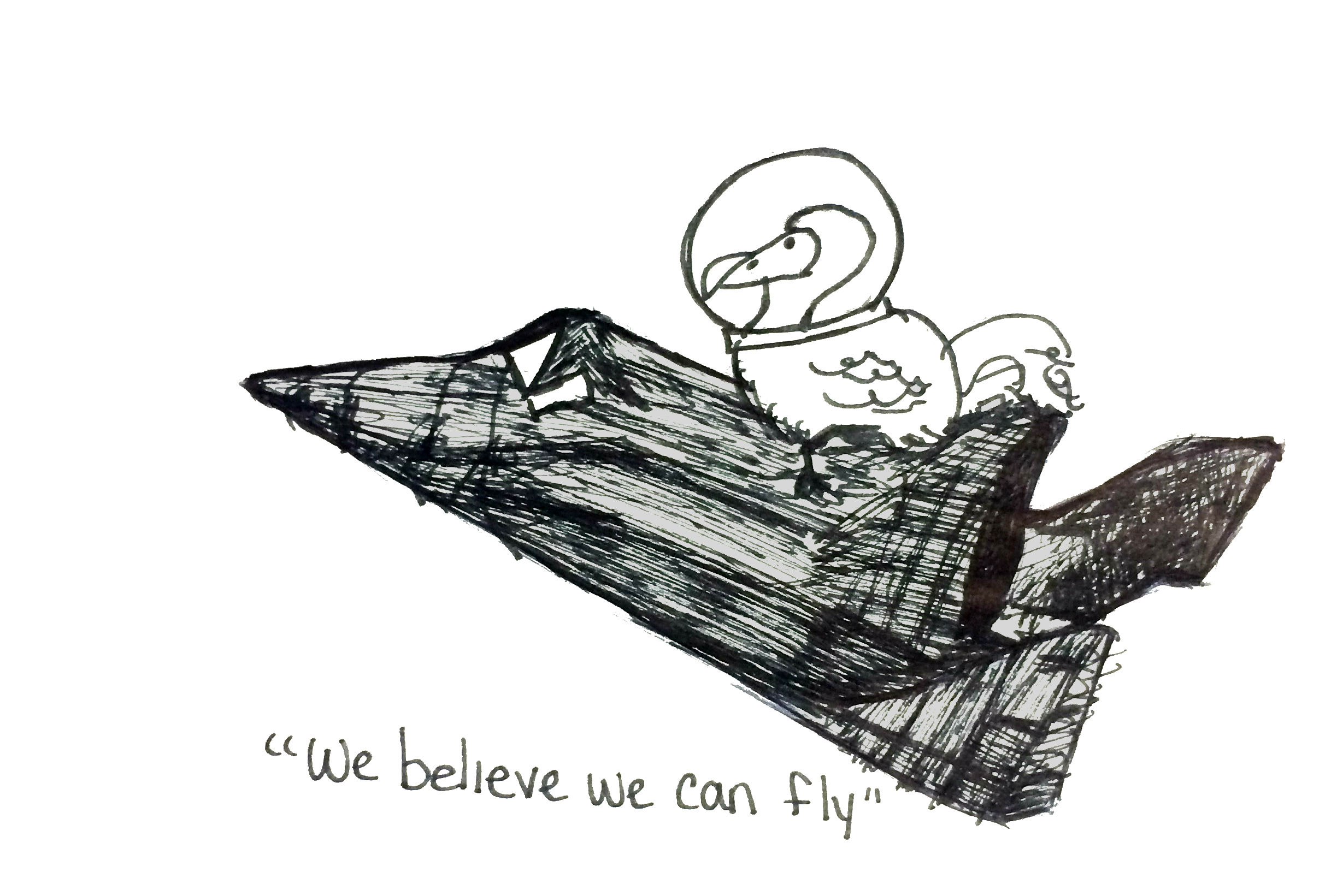 we believe we can fly